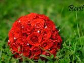K-červená (11)